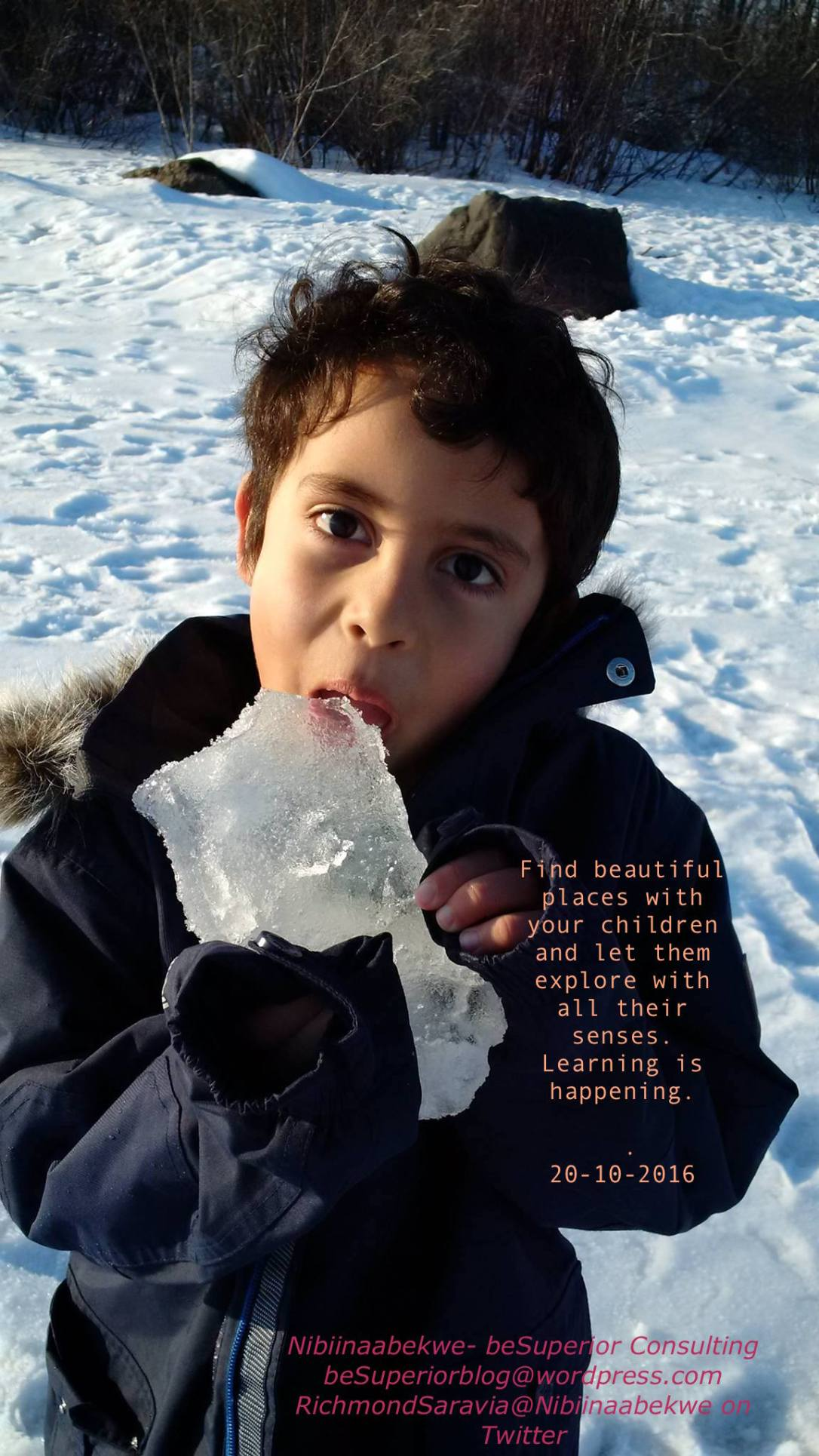learning-sites-ice